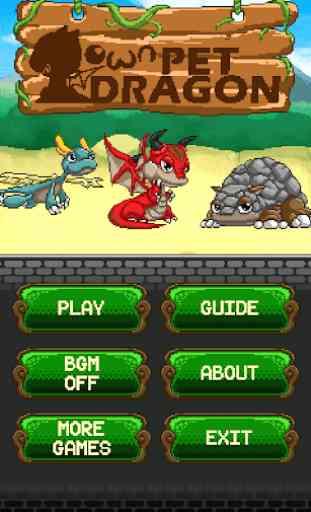 Own Pet Dragon 1