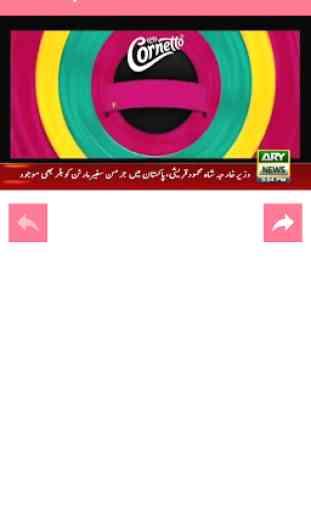 Pakistan News TV 2