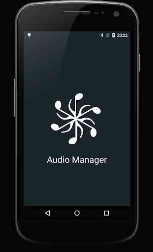 Audio Manager 1