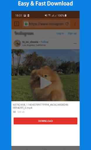 Baixador de Vídeos 3