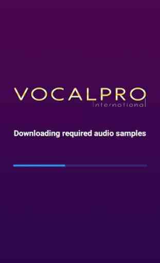 VocalPro 1